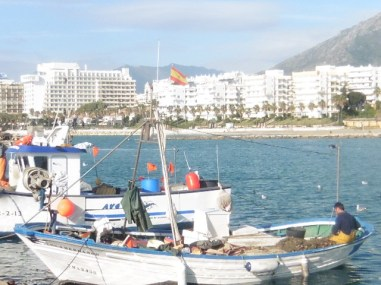 Marbella Fishing Port