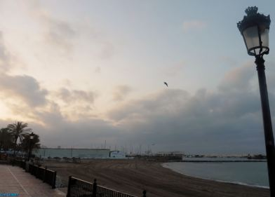 The day was blissfully overcast as I made my way towards the fishing port along the promenade in the early hours