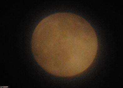 eve august full moon marbella 2