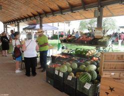 Organic Farmer's Market, Coín, Málaga