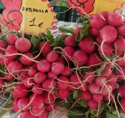 Irresistible radishes...